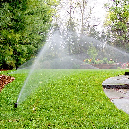 An example of a fully working irrigation system
